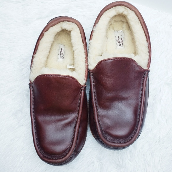 UGG Other - UGG Ascot Cordovan Leather Slip On